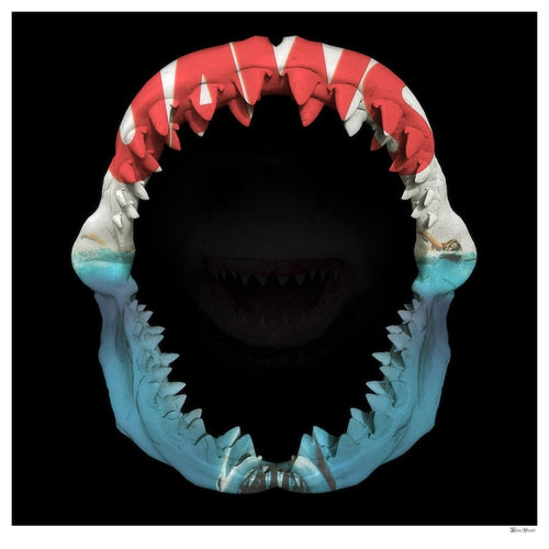 Jaws by Monica Vincent
