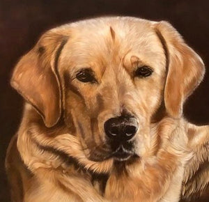 Original Golden Lab by Gordon Corrins