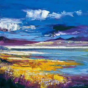 Evening Light, Luskentyre, Harris by Jolomo ( John Lowrie Morrison )
