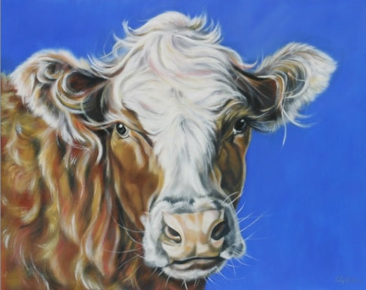 Original Angus Calf by Carol Gillan