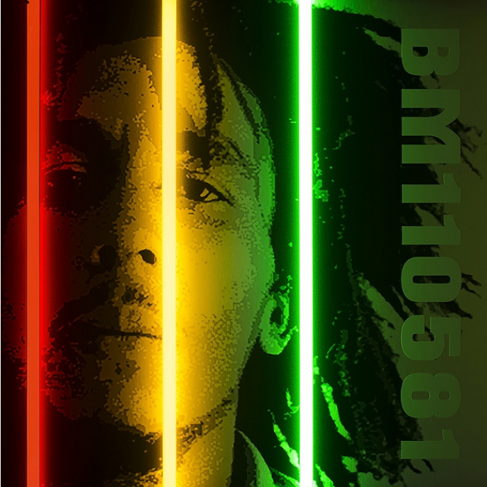 Bob Marley Signed Limited Edition by Courty
