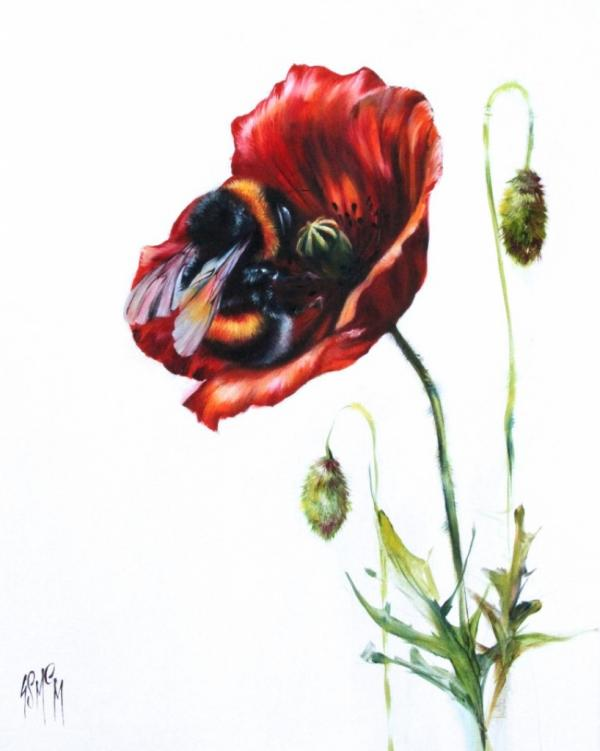 Poppy Love by Georgina McMaster