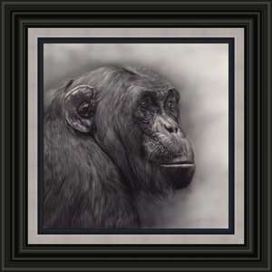 Original Rufus - Chimpanzee by Gordon Corrins
