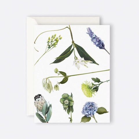 Father Rabbit Greeting Card | Botanicals