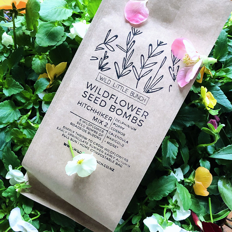 Wildflower Seed Bomb | Hitch Hiker