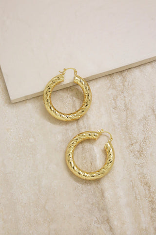 Two Lane Crystal Hoop Earrings