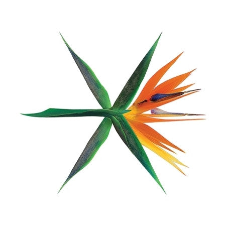 EXO - THE WAR (The 4th Album) | Korean Version
