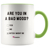 Are you In A Bad Mood? Bitch, I Might Be Mug - UntamedEgo LLC.