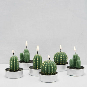 WickedAF candles Succulent Desert Candles 6pcs