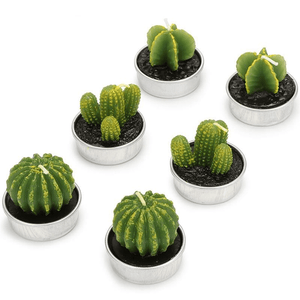Succulent Desert Candles 6pcs candles WickedAF