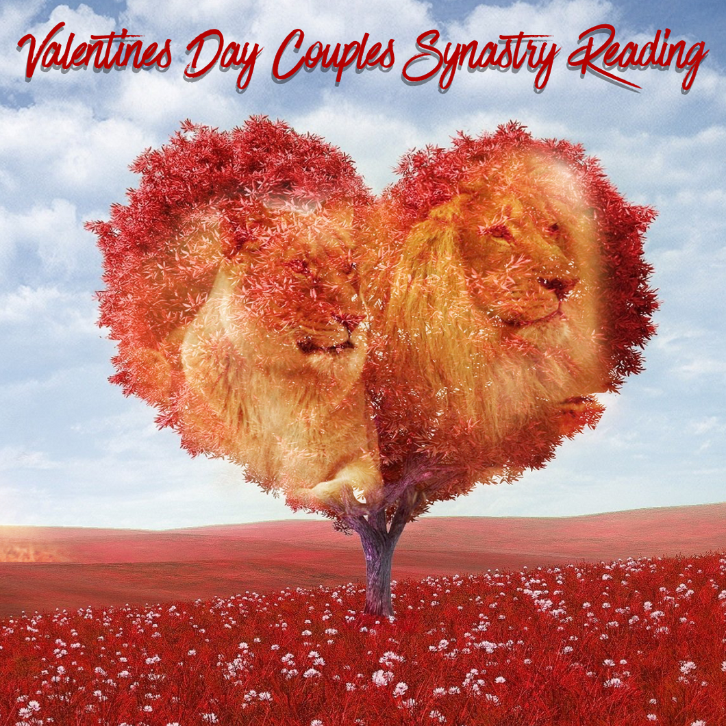 Valentines Day Couples Synastry Reading Special