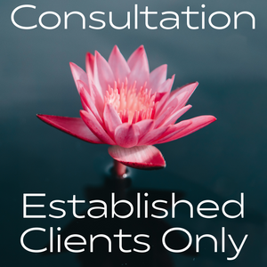 Established Clients Only Consultation