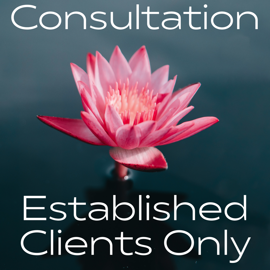 Established Clients Only Consultation (No Readings from Jan 1st- Feb 1st 2021)