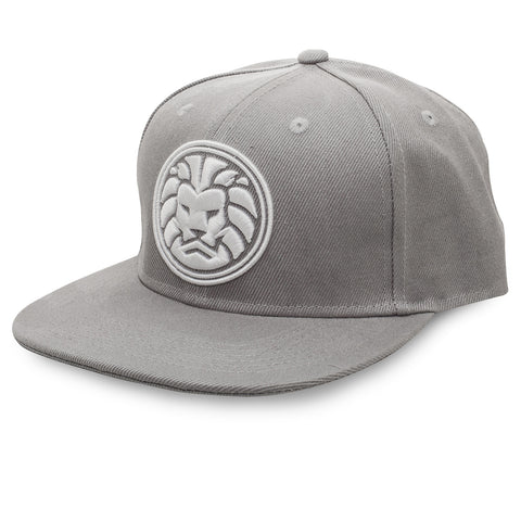 Grey WATCHANISH Logo Snapback hat