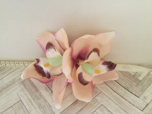 ELLA - cymbidium orchid hairflowers - various colours