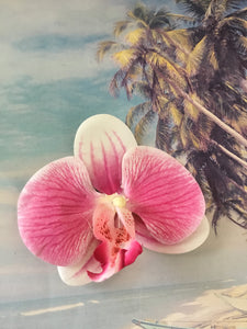Phalaenopsis real touch medium orchid clip - Pink