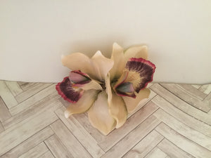 ELLA - cymbidium orchid hairflowers