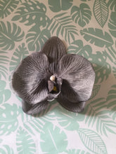 Load image into Gallery viewer, Phalaenopsis velvet touch large orchid clip - Grey