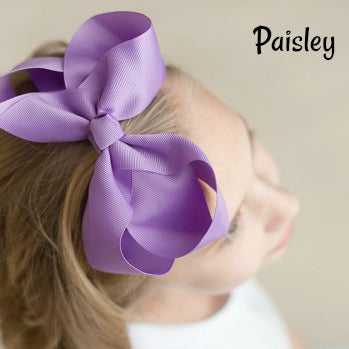 Hair Bow in Paisley