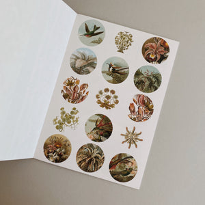Sticker Book - Art Forms in Nature