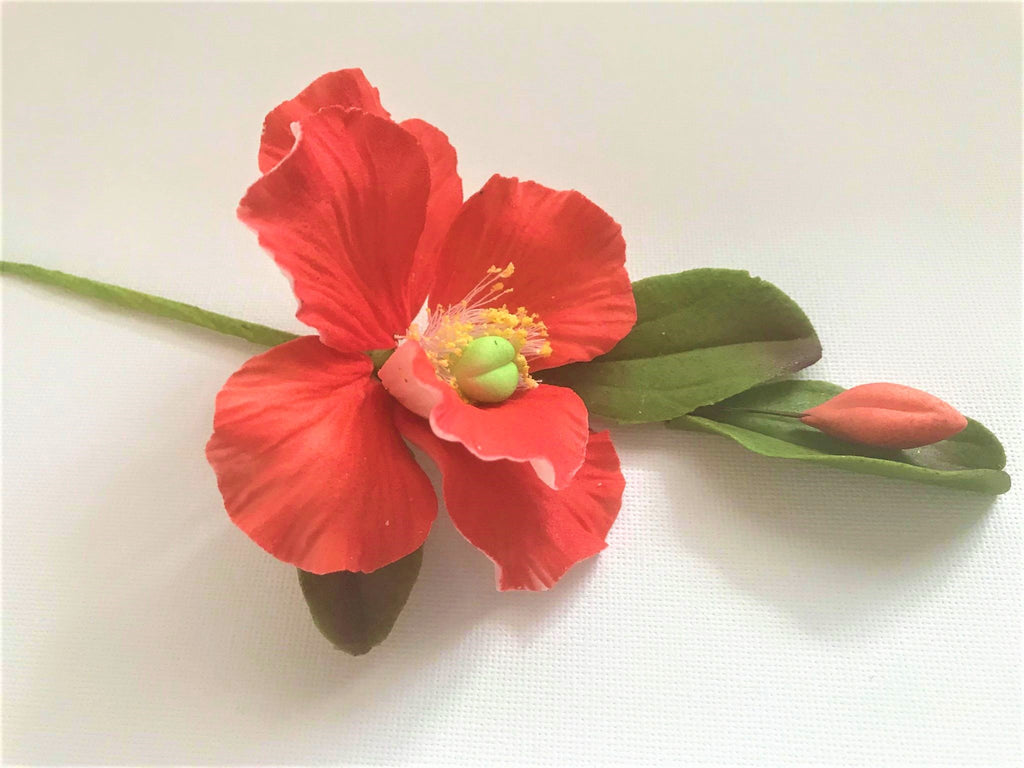 Floare Camelia din zahar - Nati Shop