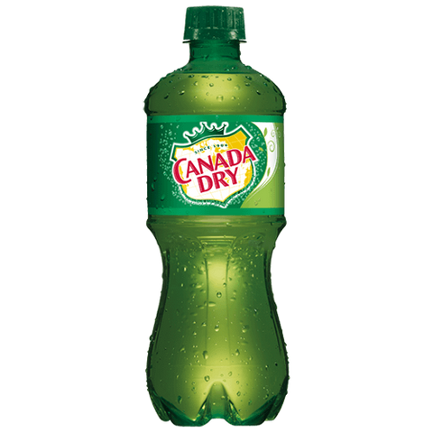 Canada Dry Ginger Ale 16.9oz