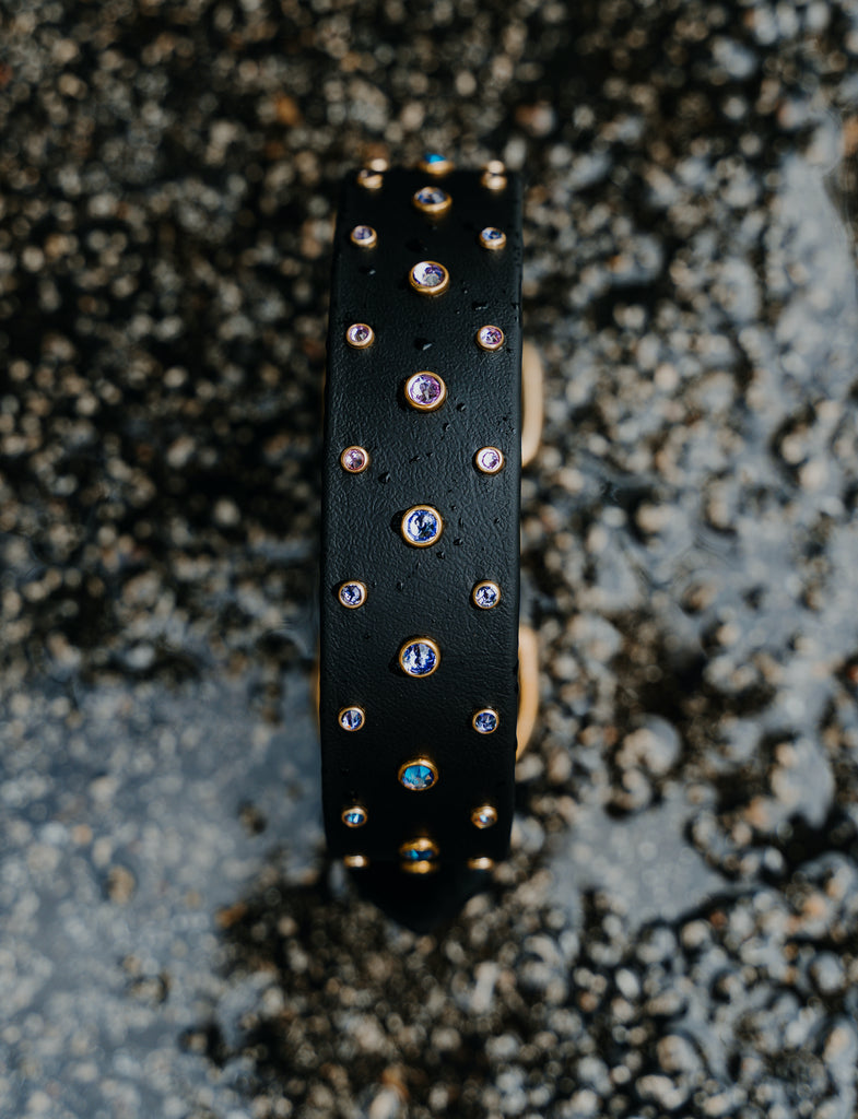 The 'Summit' Buckle Collar