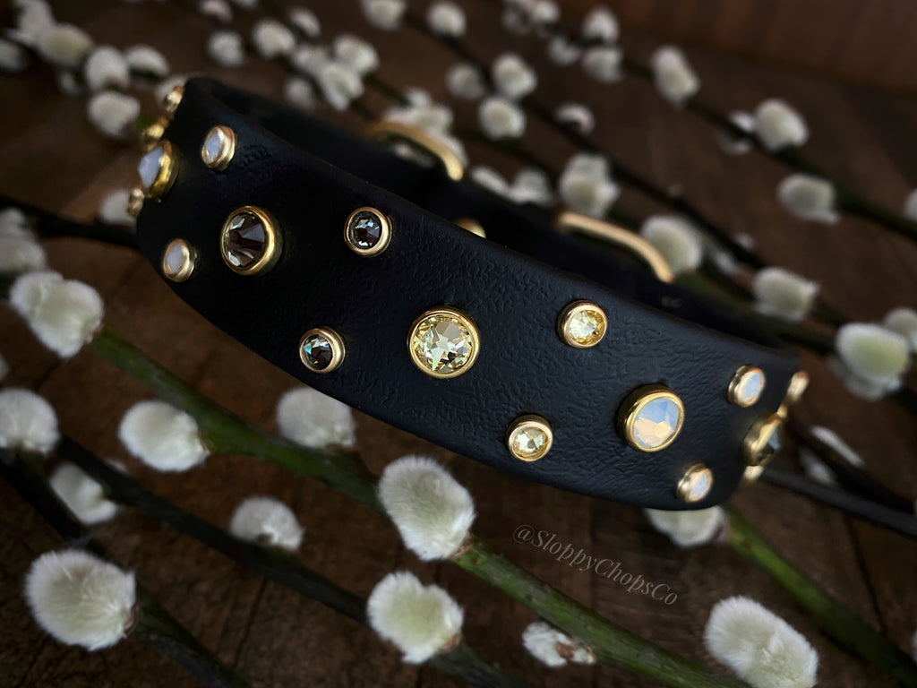 'The Summit' Buckle Collar