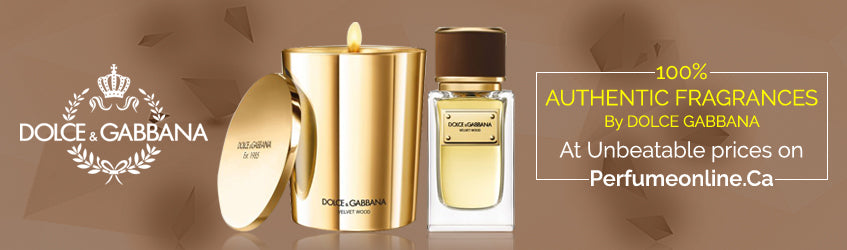 d0b7f3304b41 Buy Dolce Gabbana Perfumes and Colognes online in Canada – Perfumeonline.ca