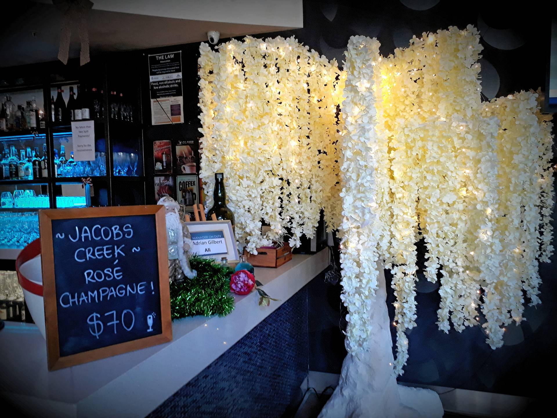wisteria tree hire venue styling auckland