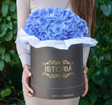 Hydrangea in Signature Box (no vase inside)