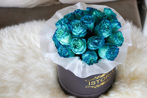 blue roses Auckland