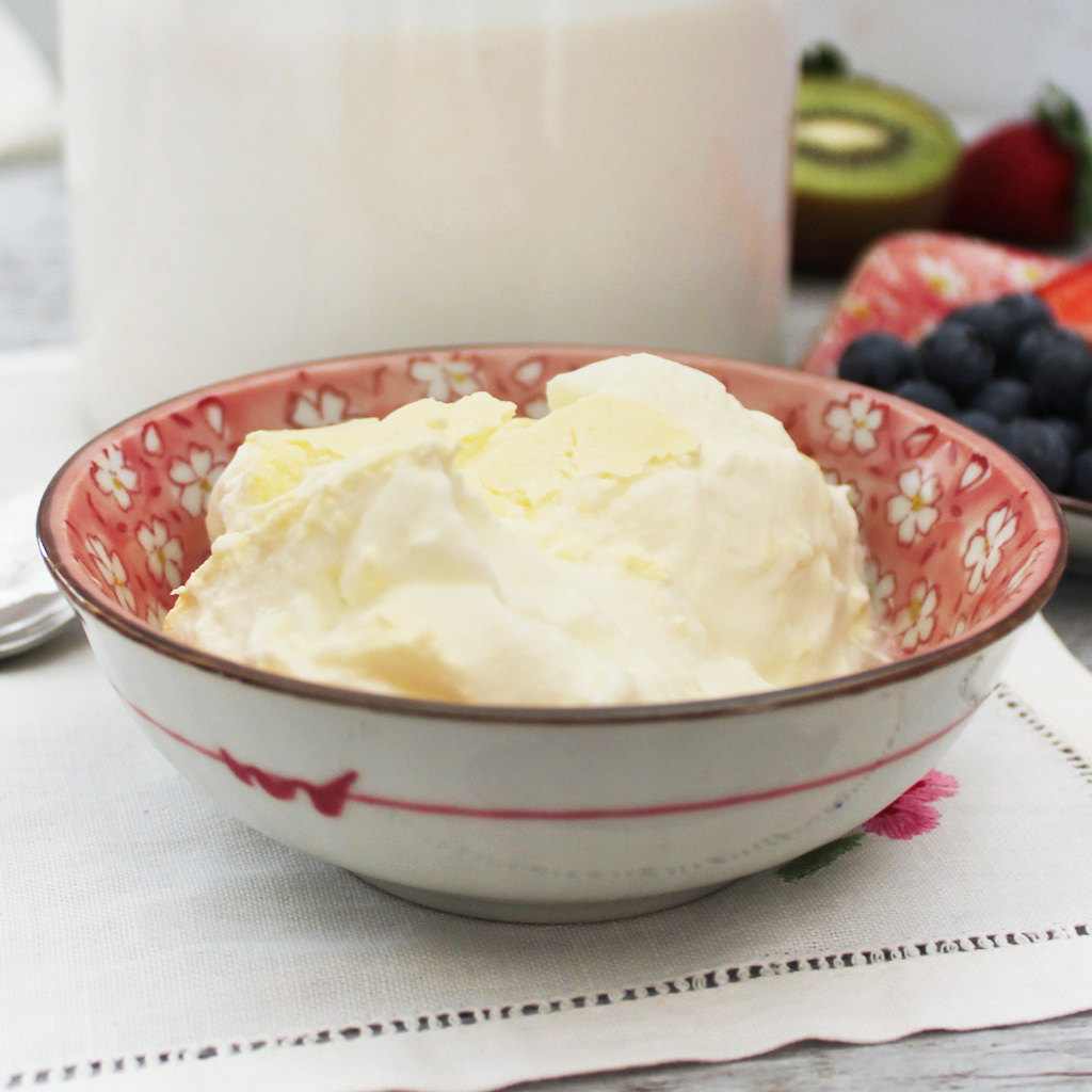 STEP BY STEP HOMEMADE YOGURT RECIPE (SCD & GAPS)