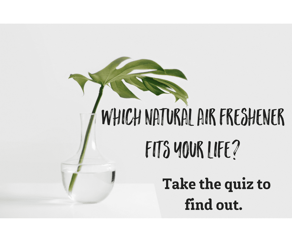 Quiz: which natural air freshener fits your life?