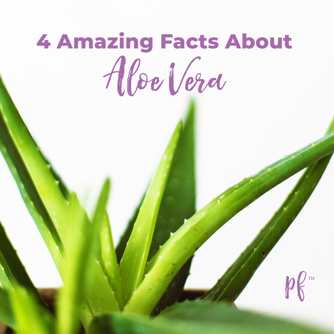 4 Amazing Facts About Aloe Vera