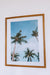 Photo Print: Palms, Gili Trawangan