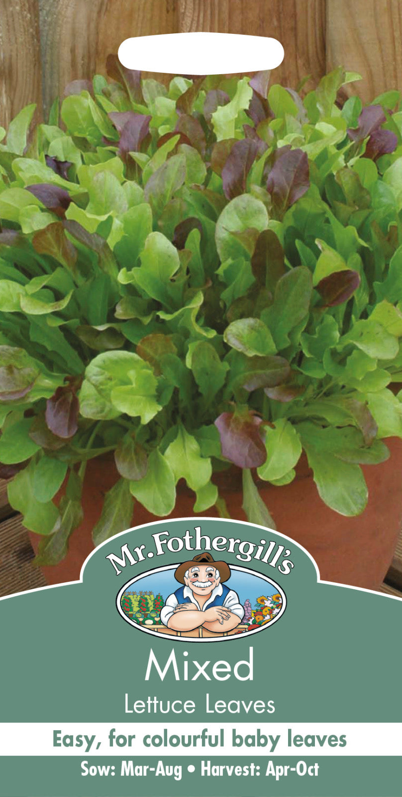 Mixed Lettuce seeds