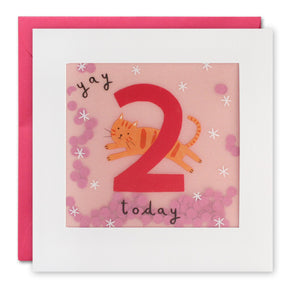 PP3269 - Age 2 Cat Paper Shakies Card