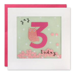 Age 3 Owl Birthday Card with Paper Confetti - Paper Shakies by James Ellis