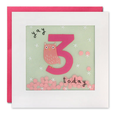 PP3271 - Age 3 Owl Paper Shakies Card