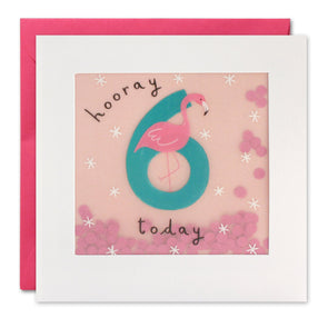 PP3277 - Age 6 Flamingo Paper Shakies Card