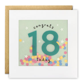 PP3319 - Age 18 Stars Paper Shakies Card