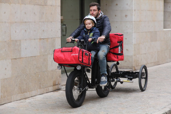 UNI Swing food delivery electric bike/ cargo bike/ electric bike with trailer