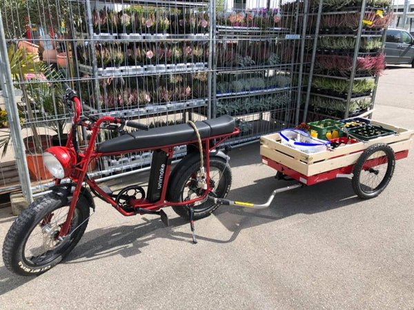 Electric delivery bike with cargo trailer, Electric cargo bike, Uni Moke