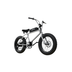 UDX Electric Fatbike 750W