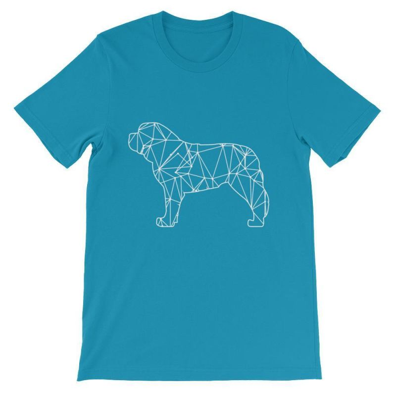 Saint Bernard Geometric Design - Unisex Short Sleeve T-Shirt Aqua / S