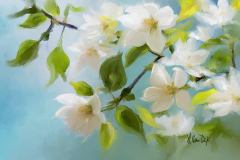 Sun-kissed Blossom Digital Painting