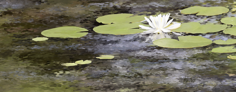 Lilypads Digital Painting