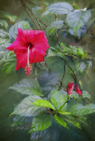 Red Hibiscus Digital Painting