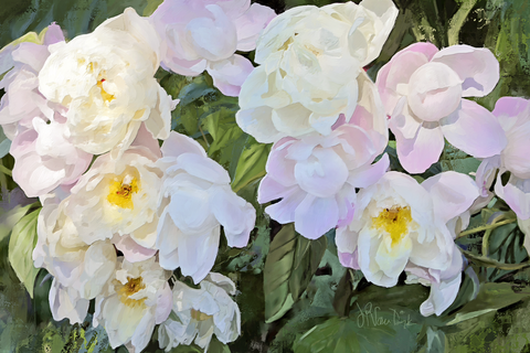 White Pink Peonies Digital Painting